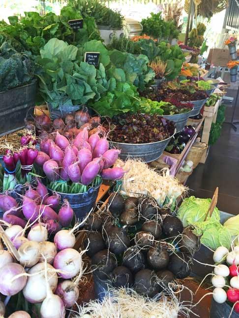Cabo - Flora Farms